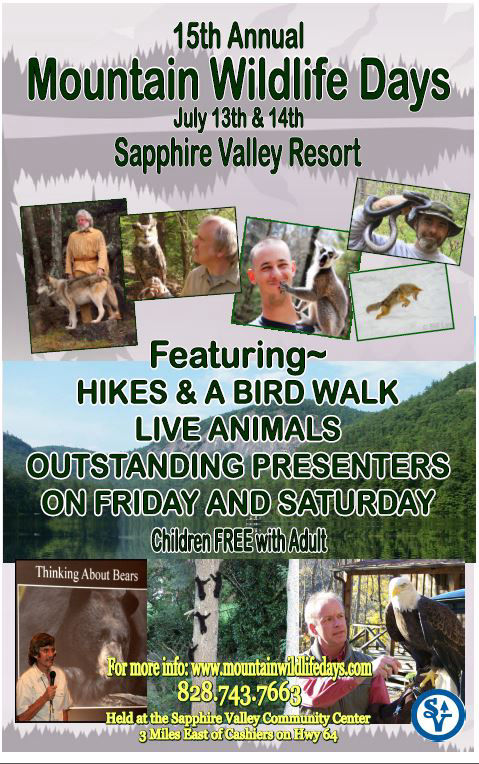 sapphire valley resort mountain wildlife days
